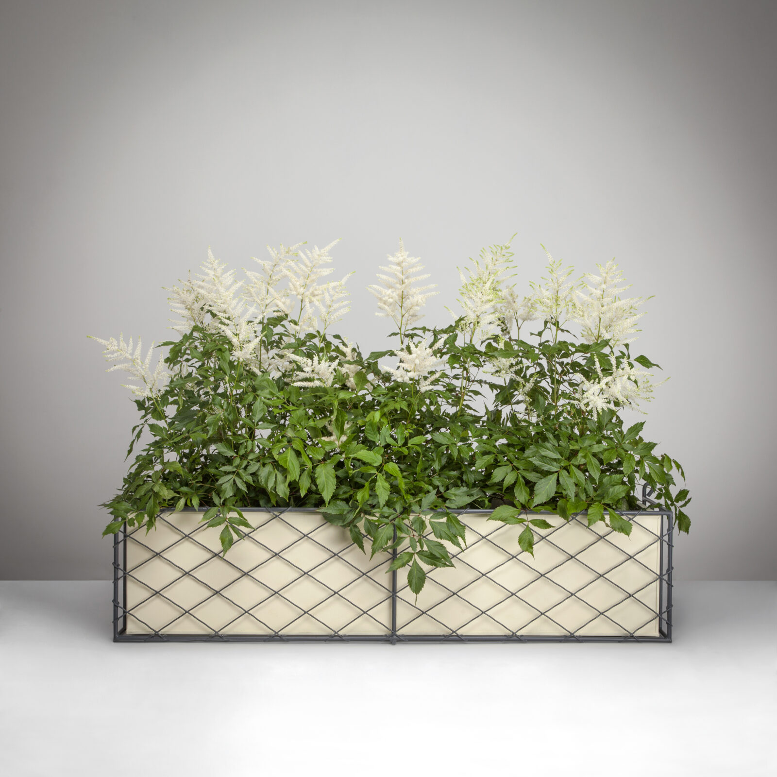 1 Wirework Window Box with Planter