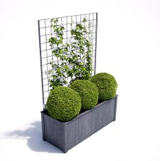 trellis trough