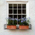 3.-Window-boxes