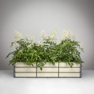 Contemporary Window Box with Planter