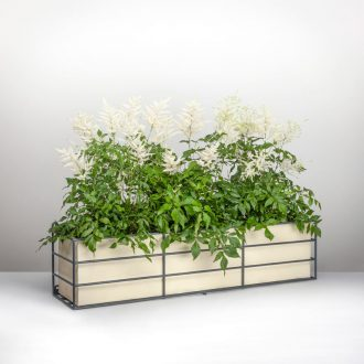 Contemporary window box with Astibe