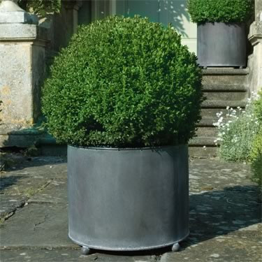 Galvanized Steel Planters