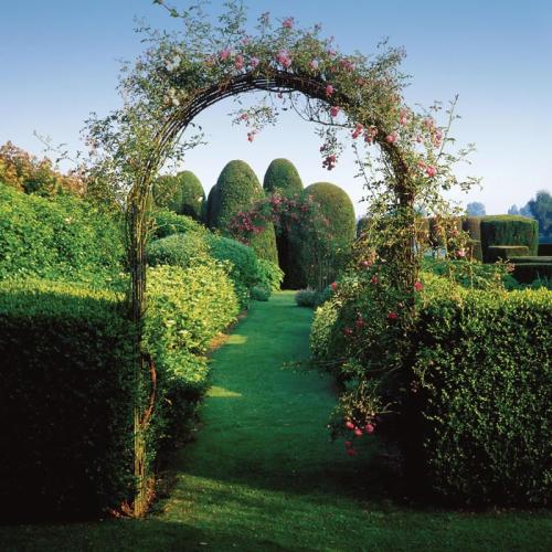 Garden Rose Arch