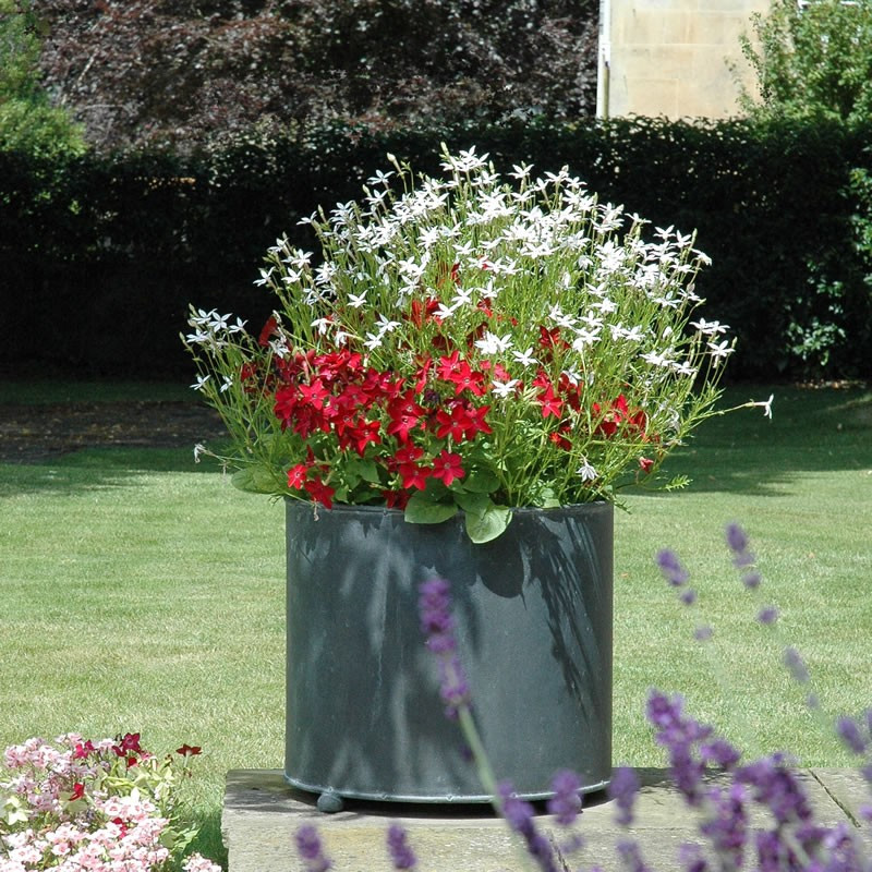Lead Garden Planter