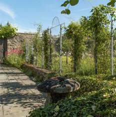 Metal Garden Trellis