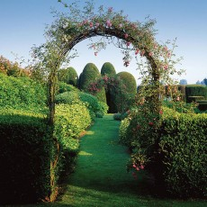 Metal-garden-arch-square