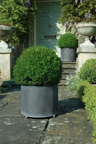 Large Round Planters For Generous Displays