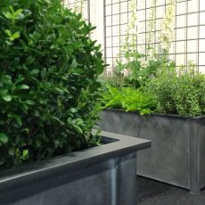 Large Metal Planters with Contemporary Trellis