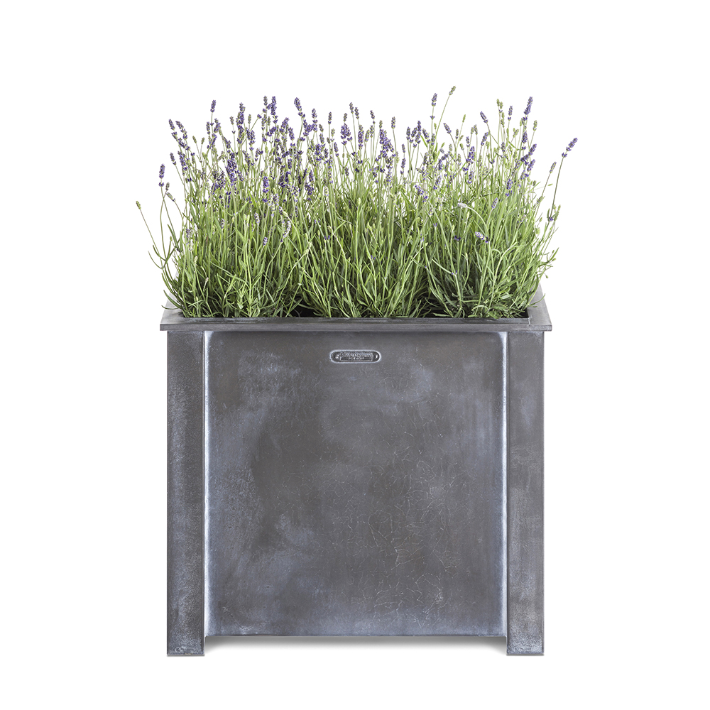 Square garden planter with lavender