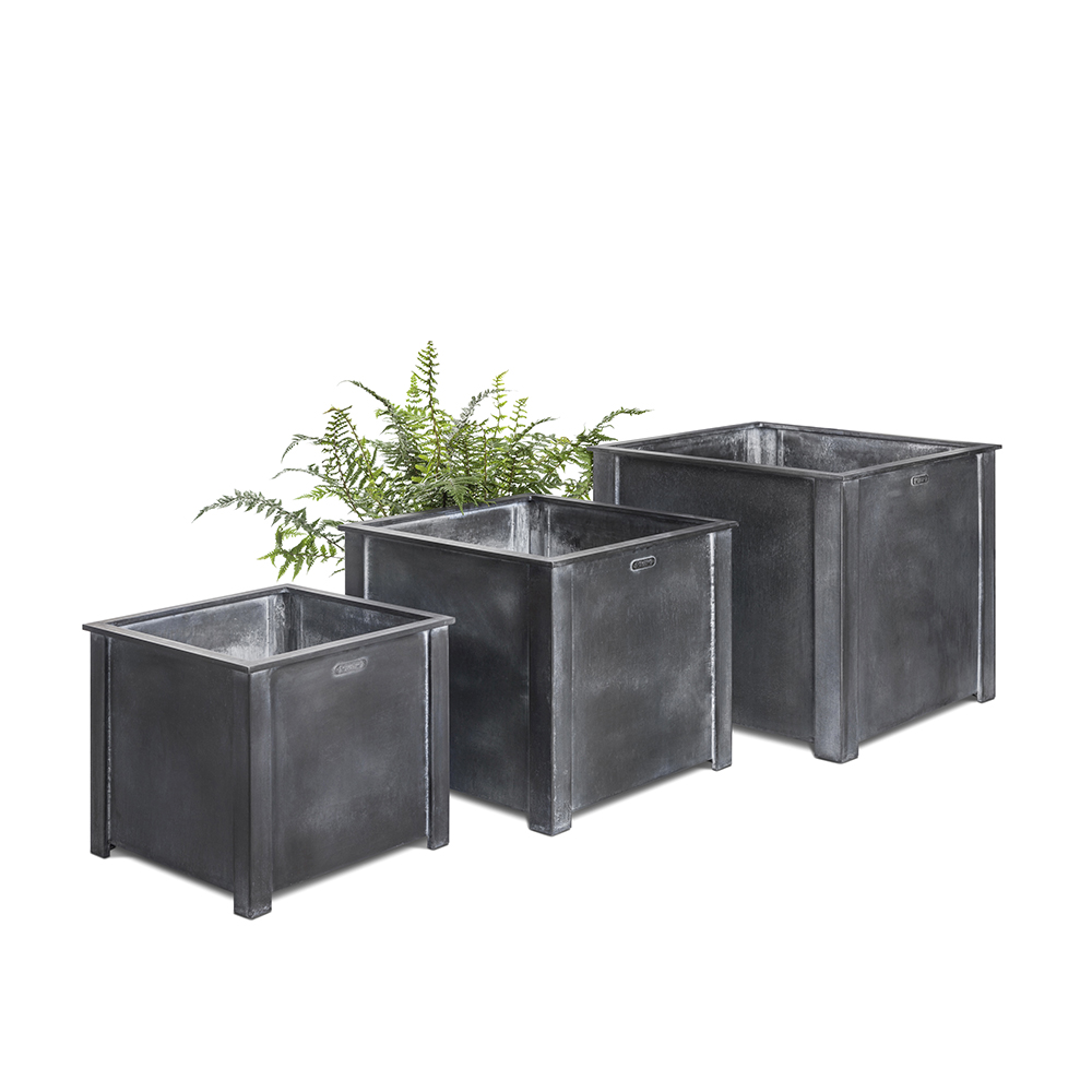 Steel planters with fern