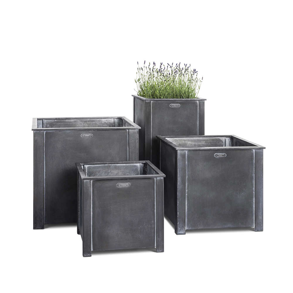 Steel planters with lavender