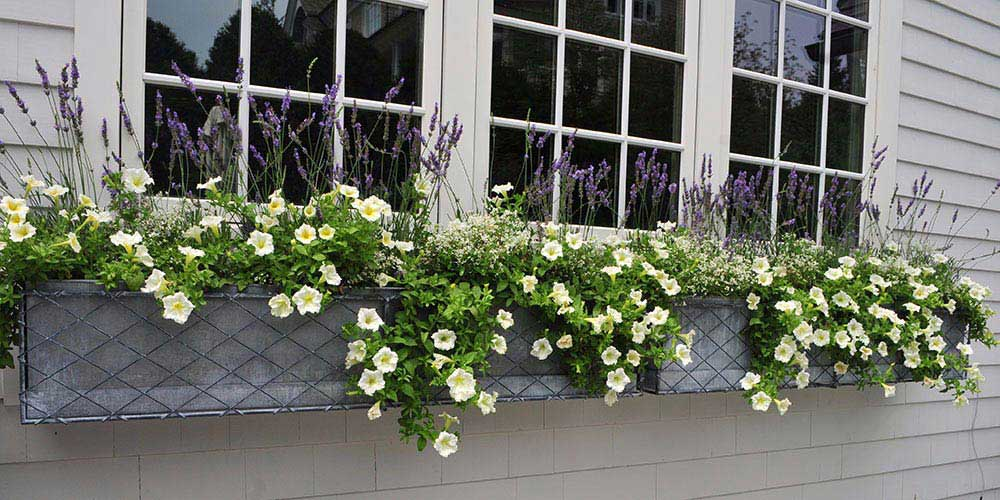 Window box Large