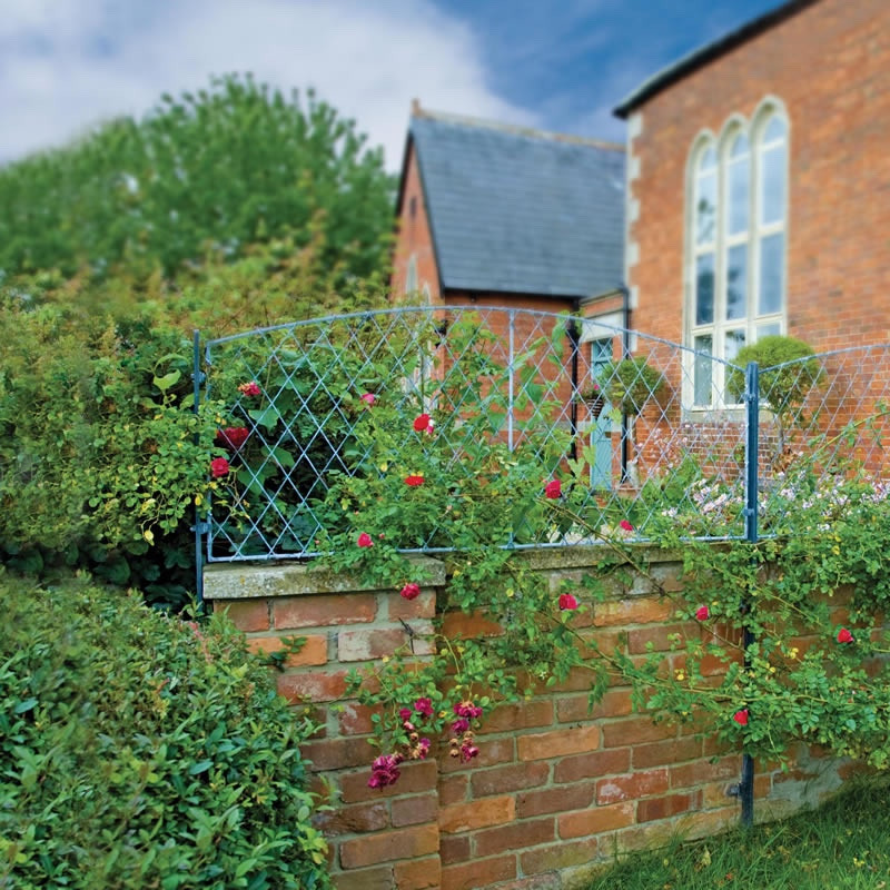 Wall Top Trellis