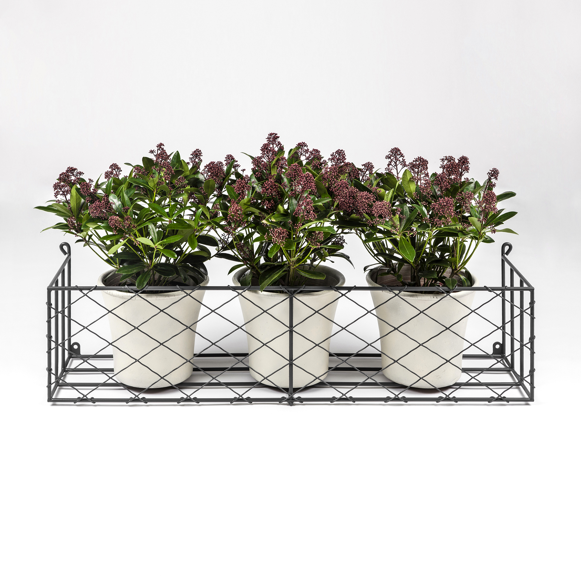 Window Box with Pots