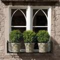 Windowbox with pots