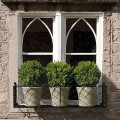Windowbox with pots