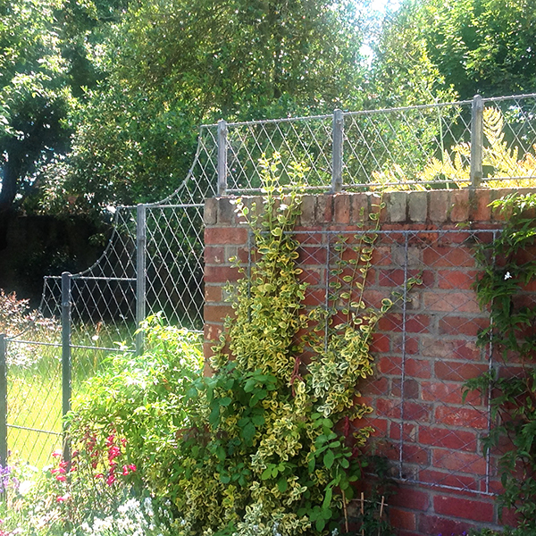 Wiremesh Wall Top Trellis