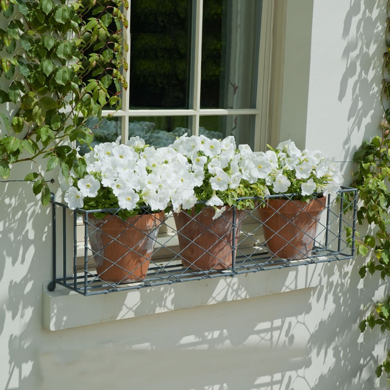 Wrought Iron Window Box and Pots