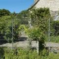 Garden trellis fence panels and posts