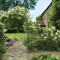 Rose arch and trellis side panels