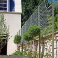 Trellis wall top and front fixing posts