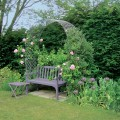 Wirework rose arch and bench